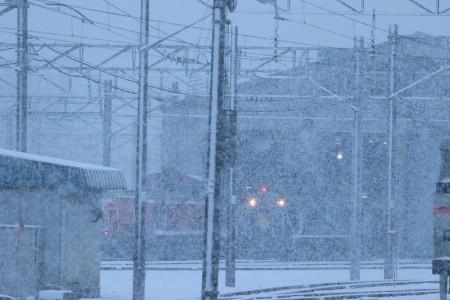 札幌運転所-急行はまなす