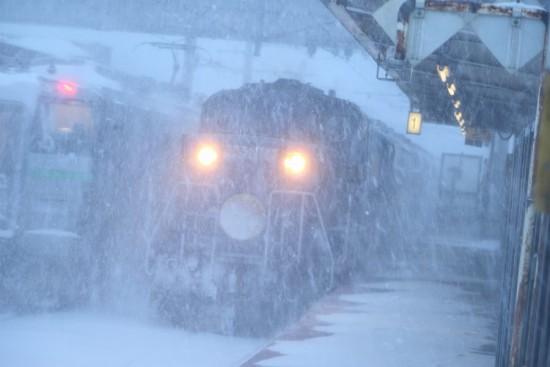 稲積公園駅 急行はまなす-吹雪 2番線 ズーム流し