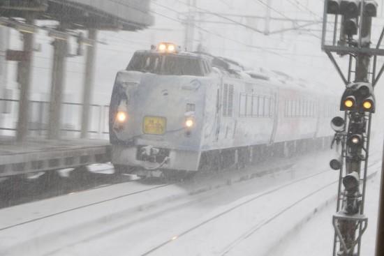 旭山動物園号-札幌駅