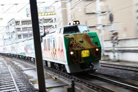 ズーム流し 流し撮り 旭山動物園号-札幌駅 10番線