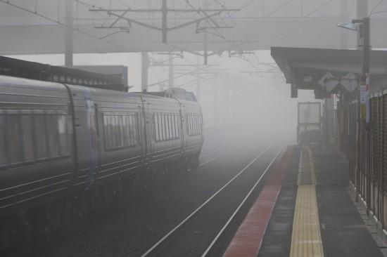稲積公園駅 霧 アンダー 列車 通過