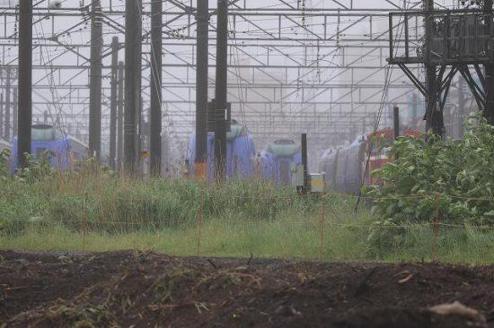 札幌運転所 留置線 キハ283系